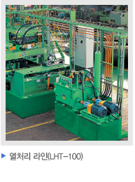 Heat Treatment Line (LHT-100)